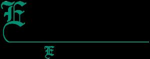 E Street Financial logo